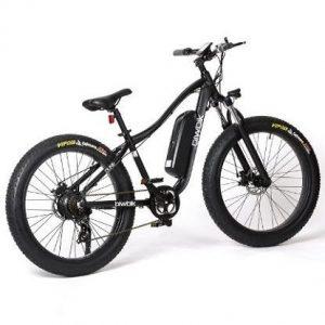 Bicicleta eléctrica de montaña Biwbik Dune
