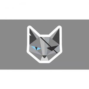 CatTorrent