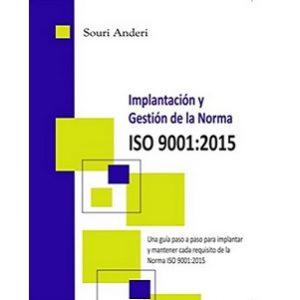 Implantación y gestión de la norma ISO 9001